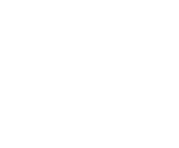 FLATPACK PROFESSOR